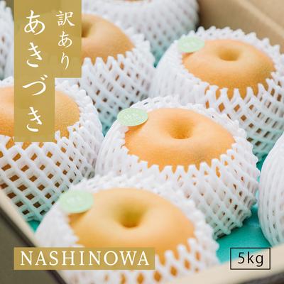 NASHINOWA 訳あり梨 あきづき【5kg】