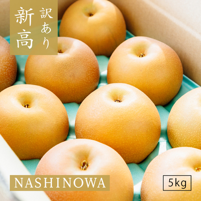 NASHINOWA 訳あり梨 新高【5kg】