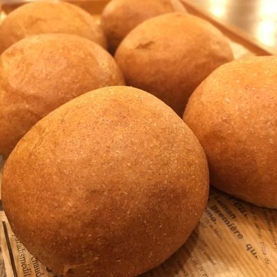 低糖質パン プレーン