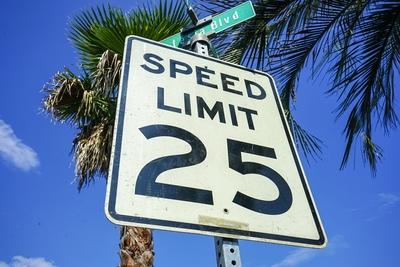 ロードサイン SPEED LIMIT 25