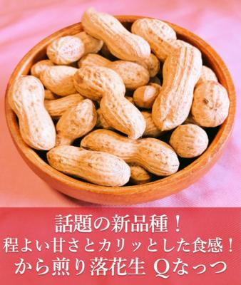 から煎り落花生 Qなっつ(キューナッツ)