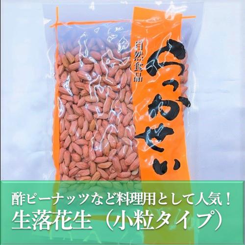 生ピーナッツ・生落花生千葉半立 小粒タイプ