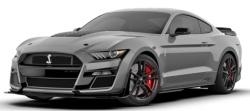1/12  フォード シェルビー GT500 2020 (グレー)
