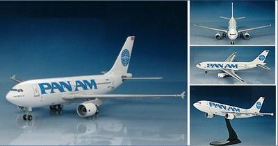 エアバス A310-300 モーニングスター