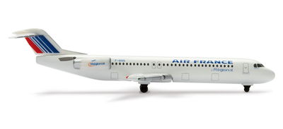 Fokker100 エールフランス リージョナル フランス
