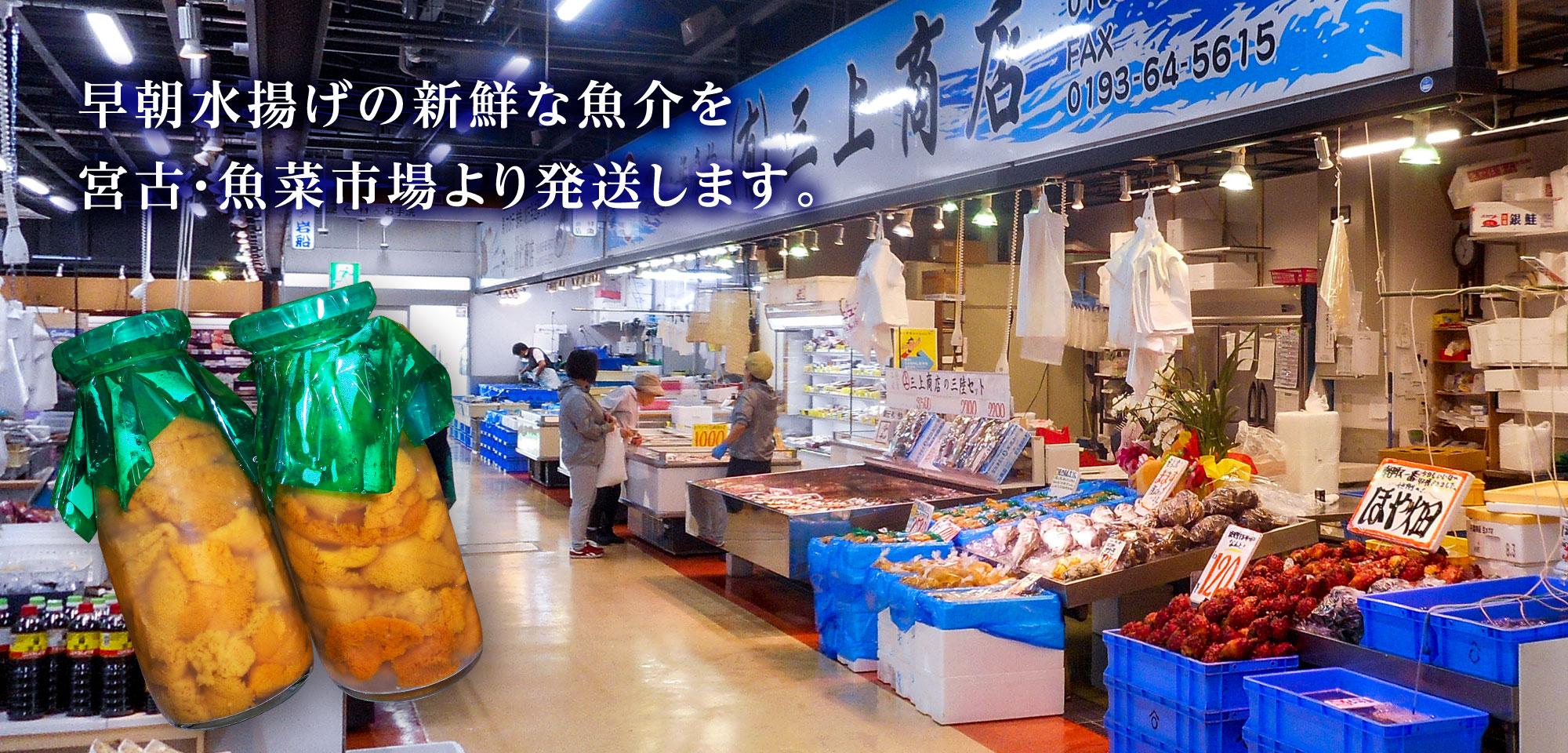 三上商店は早朝水揚げの新鮮な魚介を 宮古・魚菜市場より発送します。