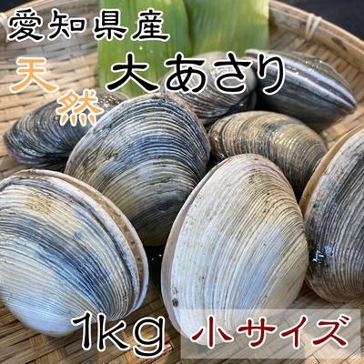 天然大あさり 小サイズ 1kg 【師崎漁港から直送】
