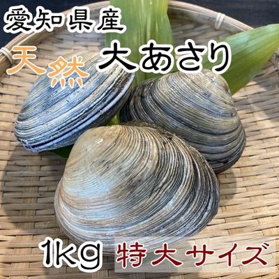 天然大あさり 特大サイズ 1kg 【師崎漁港から直送】
