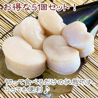 【愛知県産】平貝(貝柱のみ) 中サイズ 5個セット