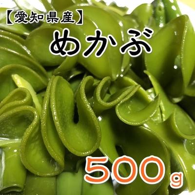 【愛知県産】生めかぶ 500g