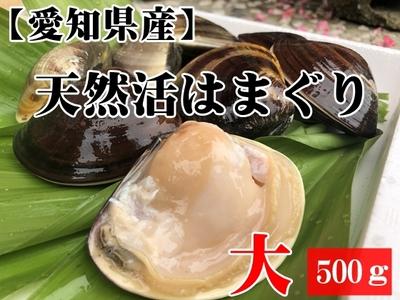 【愛知県産】天然活きはまぐり (大サイズ) 500g 6個前後