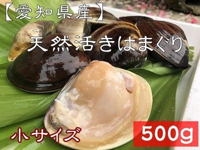 【愛知県産】 天然活きはまぐり(小サイズ)  13~15個 500g