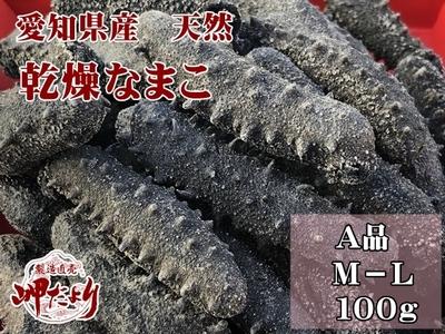 乾燥なまこ 干しなまこ A品100g 愛知県産