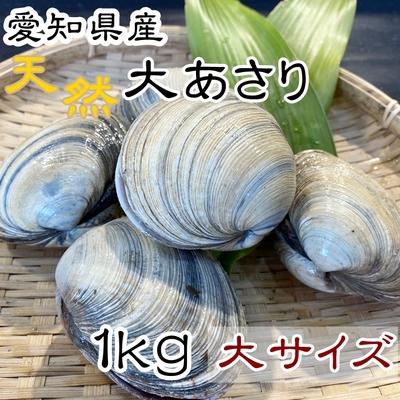 天然大あさり 大サイズ 1kg 【師崎漁港から直送】