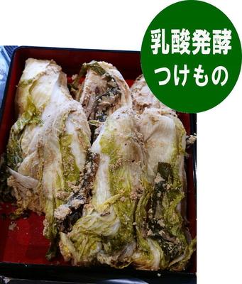 樽出し ぬか漬け白菜(期間限定)1/2株