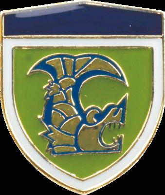 陸上自衛隊 部隊ピンバッチ 第10師団