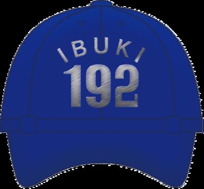 野球帽 いぶき DDV192(青)