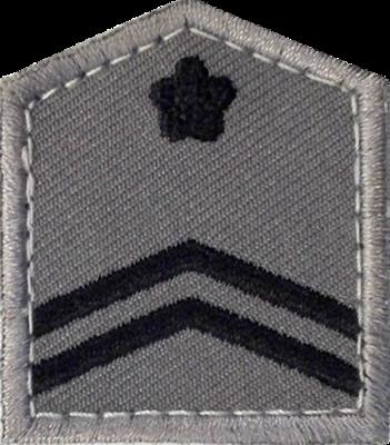 航空自衛隊 2等空曹 略章 片面ベルクロ