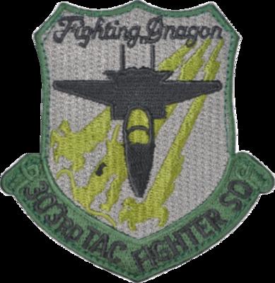 小松 第303飛行隊 ロービジパッチ