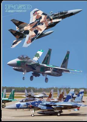A4クリアファイル 航空自衛隊 F-15DJ アグレッサー 3画像