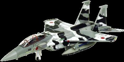 航空自衛隊 F-15DJ 飛行教導隊 32-8081, 2009 ブラック