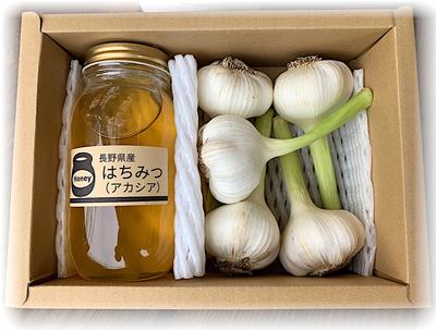【Spring03】アカシア蜂蜜&新にんにく SET