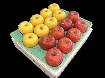 りんご詰め合わせ サンふじ&ゴールド 特秀品5Kg