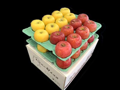 りんご詰め合わせ サンふじ&ゴールド 特秀品10Kg