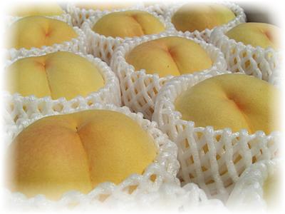 桃 黄金桃(有袋栽培) 秀品2Kg