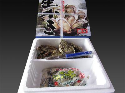 広島県産 生かきセット むき身 500gと殻付 10個