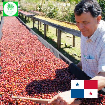 コーヒー豆 パナマ ベルリナ農園 ナランハル ゲイシャ ナチュラル 200g 約20杯分