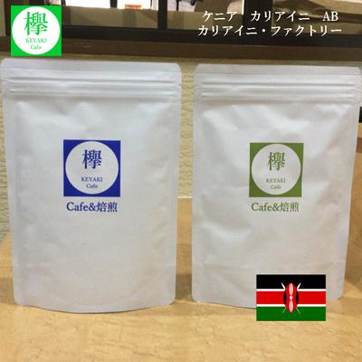 コーヒー豆 ケニア カリアイニ AB カリアイニ・ファクトリー 200g SCAJ基準85点以上