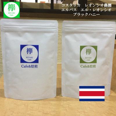 コーヒー豆 コスタリカ エルバス エル・レオンシオ ブラックハニー  レオンシオ農園 200g SCAJ基準85点以上
