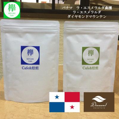 コーヒー豆 パナマ ラ・エスメラルダ農園  ラ・エスメラルダ ダイヤモンドマウンテン 200g