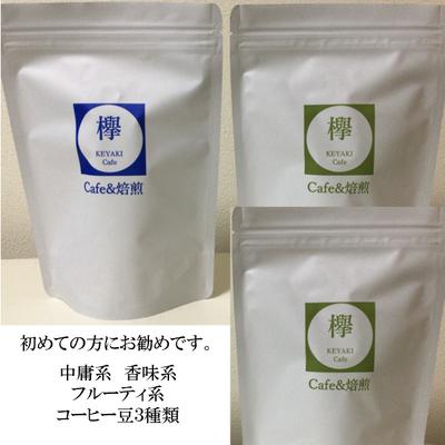 コーヒー豆 マンデリン モカ ブラジル  初めての方にお勧め お試しセット  各100g(合計300g)