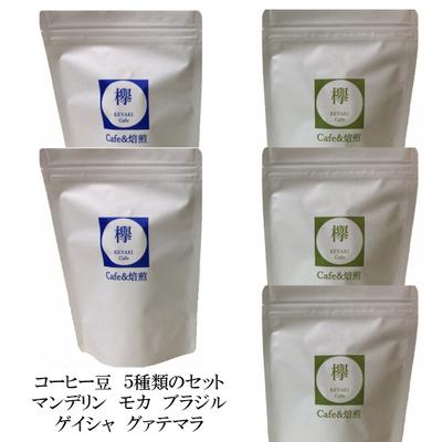 コーヒー豆 人気の5種類 マンデリン モカ ブラジル ゲイシャ グァテマラ お試しセット  各200g(合計1kg)