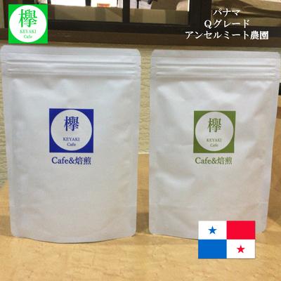 コーヒー豆 パナマ アンセルミート農園 Qグレード86.00点 (200g)