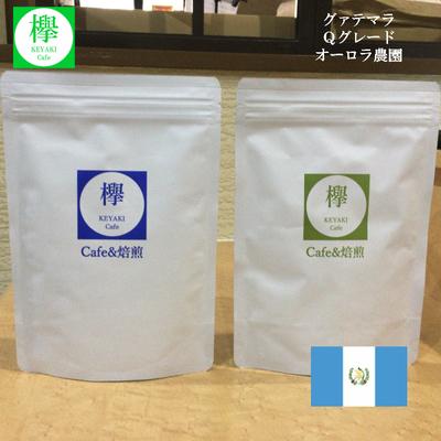 コーヒー豆 グァテマラ Qグレード84.00点 オーロラ農園 (200g)