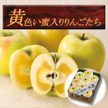 黄色い蜜入りりんごたち
