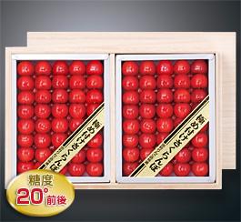 佐藤錦(厳選品680g×2箱)