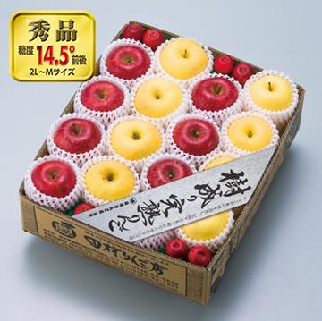 シナノゴールドと蜜入りサンふじの赤と黄の組み合わせ