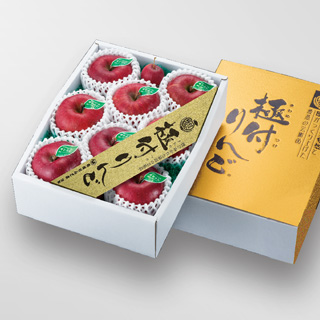 JA新岩手産・江刺産 蜜入り縞サンふじ[極付りんご]