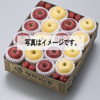 りんご4種・味くらべ