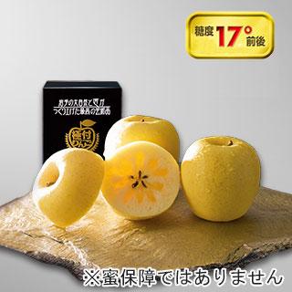 [極付りんご] 高糖度・春香の恋 大玉1個詰