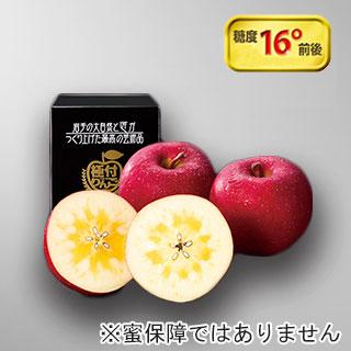 極付りんご 高糖度・サンふじ 大玉1個詰