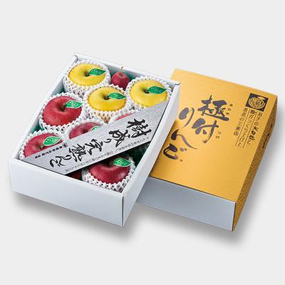 S-3コース 6ヶ月頒布会 樹成り完熟りんご・3K詰(6回分合計)