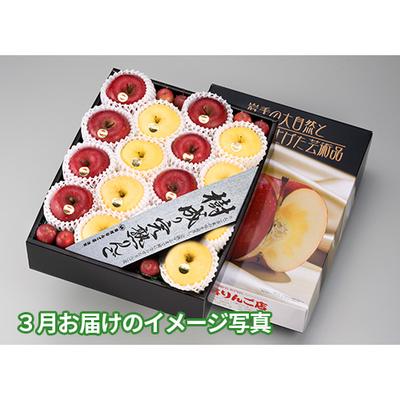 S-5コース 6ヶ月頒布会 樹成り完熟りんご・5K詰(6回分合計)