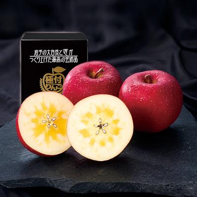 極付りんご・蜜入りサンふじ 大玉1個詰(ダンボール詰め)
