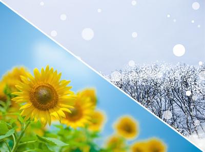 夏場と冬場の「保存」と「お召し上がり方」