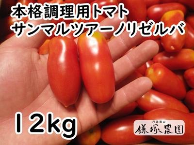 本格派調理用トマトサンマルツァーノリゼルバ【12kg】